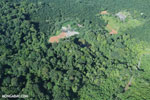 Aerial view of rainforest and oil palm plantations [costa_rica_aerial_0100]