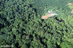 Aerial view of rainforest and oil palm plantations [costa_rica_aerial_0102]