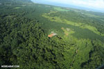 Aerial view of rainforest and oil palm plantations in Costa Rica [costa_rica_aerial_0103]