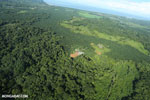 Aerial view of rainforest and oil palm plantations in Costa Rica [costa_rica_aerial_0105]