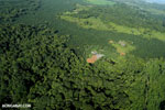 Aerial view of rainforest and oil palm plantations [costa_rica_aerial_0106]