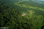 Aerial view of rainforest and oil palm plantations [costa_rica_aerial_0108]