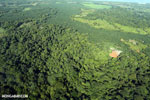 Aerial view of rainforest and oil palm plantations in Costa Rica [costa_rica_aerial_0113]