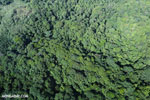 Aerial view of rainforest in Costa Rica [costa_rica_aerial_0117]