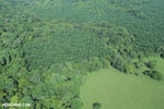 Aerial view of rainforest and oil palm plantations in Costa Rica [costa_rica_aerial_0153]