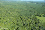 Aerial view of rainforest and oil palm plantations in Costa Rica [costa_rica_aerial_0161]