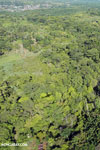 Aerial view of rainforest and oil palm plantations in Costa Rica [costa_rica_aerial_0173]