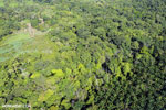 Aerial view of rainforest and oil palm plantations [costa_rica_aerial_0174]