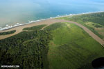 Oil palm plantation in Costa Rica [costa_rica_aerial_0260]