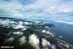 Aerial view of rainforest in Costa Rica [costa_rica_aerial_0272]