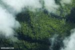 Aerial view of rainforest in Costa Rica [costa_rica_aerial_0302]