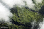 Aerial view of rainforest in Costa Rica [costa_rica_aerial_0308]
