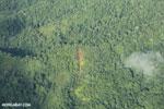 Airplane view of rainforest in Costa Rica [costa_rica_aerial_0324]