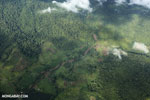 Oil palm plantation and rainforest in Costa Rica [costa_rica_aerial_0330]