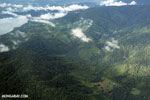 Oil palm plantation and rainforest in Costa Rica [costa_rica_aerial_0338]