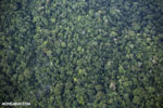 Overhead view of rainforest in Costa Rica [costa_rica_aerial_0344]