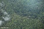 Overhead view of rain forest in Costa Rica [costa_rica_aerial_0351]