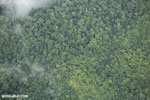 Overhead view of rain forest in Costa Rica [costa_rica_aerial_0357]