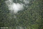 Aerial view of rainforest in Costa Rica [costa_rica_aerial_0360]