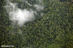 Overhead view of rain forest in Costa Rica [costa_rica_aerial_0363]