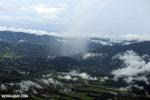 Oil palm plantation in Costa Rica [costa_rica_aerial_0378]