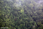 Aerial view of rainforest in Costa Rica [costa_rica_aerial_0402]