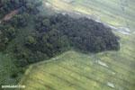 Pasture and rainforest in Costa Rica