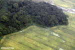 Pasture and rainforest in Costa Rica [costa_rica_aerial_0413]