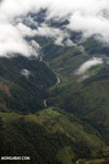 Forested valley in Costa Rica [costa_rica_aerial_0450]