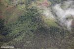 Coffee plantations in Costa Rica [costa_rica_aerial_0451]