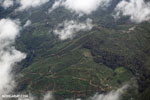 Aerial view of coffee plantations in Costa Rica [costa_rica_aerial_0456]