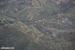 Aerial view of coffee plantations in Costa Rica [costa_rica_aerial_0461]