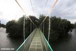 Canopy walkway [costa_rica_la_selva_0858]