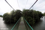 Canopy walkway [costa_rica_la_selva_0859]