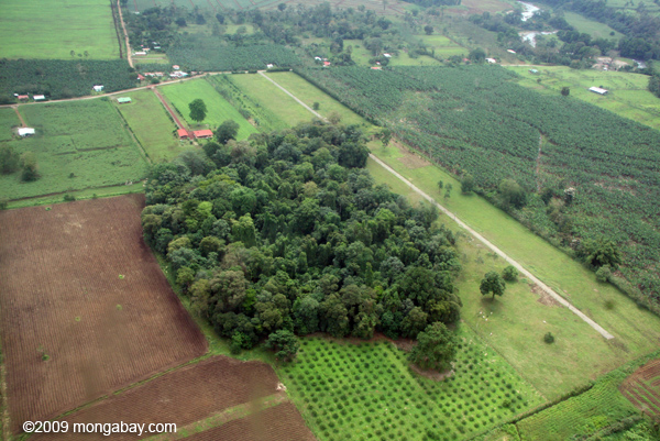 Aerial view of forest fragment in Costa Rica. Photo by Rhett A. Butler.