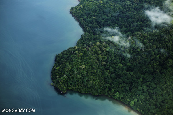 Rainforest and ocean in Costa Rica