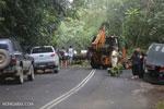 Downed tree and a bulldozer [australia_daintree_072]