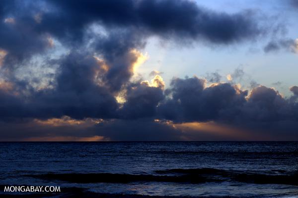 Sunrise in the Daintree [australia_daintree_056]