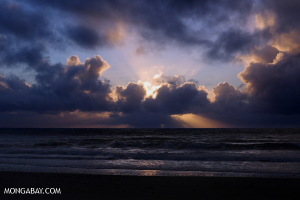 Sunrise in the Daintree [australia_daintree_058]