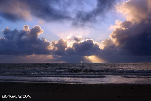Sunrise in the Daintree [australia_daintree_060]