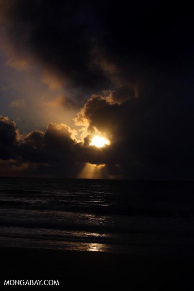 Sunrise in the Daintree [australia_daintree_061]
