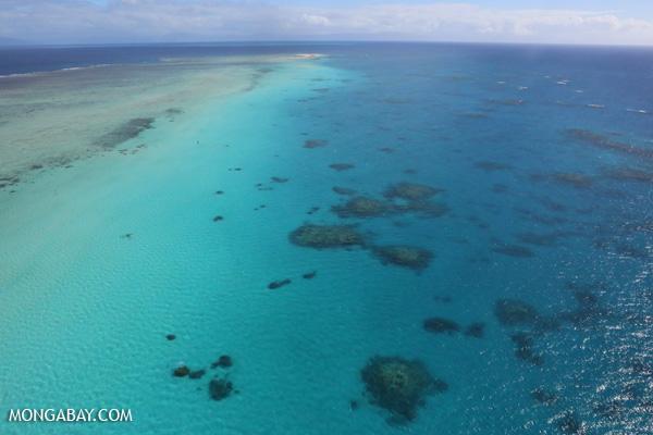 Great Barrier Reef near Cairns [australia_great_barrier_reef_0099]