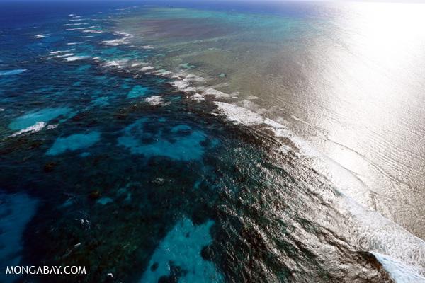 Great Barrier Reef near Cairns [australia_great_barrier_reef_0127]