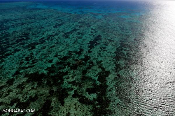 Great Barrier Reef [australia_great_barrier_reef_0145]