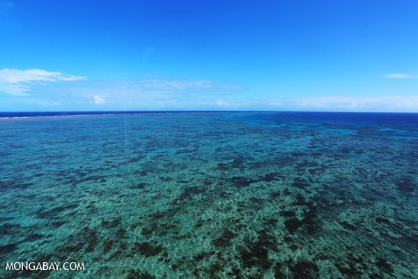 Hastings Reef in Australia [australia_great_barrier_reef_0152]
