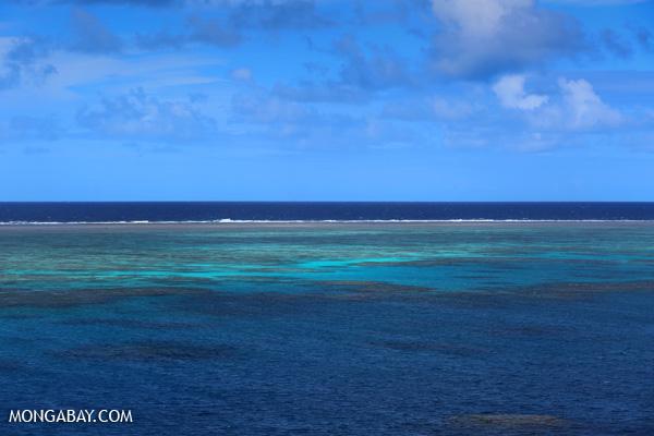 Hastings Reef on the Great Barrier Reef [australia_great_barrier_reef_0206]