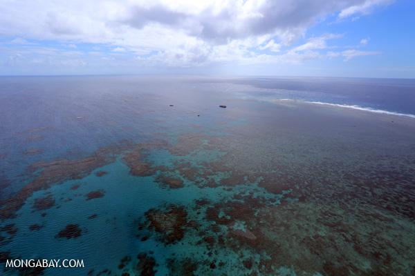 Hastings Reef on the Great Barrier Reef [australia_great_barrier_reef_0242]