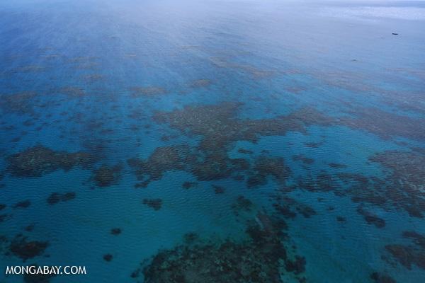 Hastings Reef in Australia [australia_great_barrier_reef_0244]