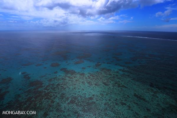 Hastings Reef in Australia [australia_great_barrier_reef_0252]