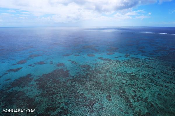 Hastings Reef in Australia [australia_great_barrier_reef_0256]
